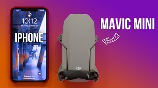 DJI Mavic Mini - In-Depth Review