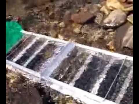 Como extraer oro de los rios youtube for Como es una beta de oro