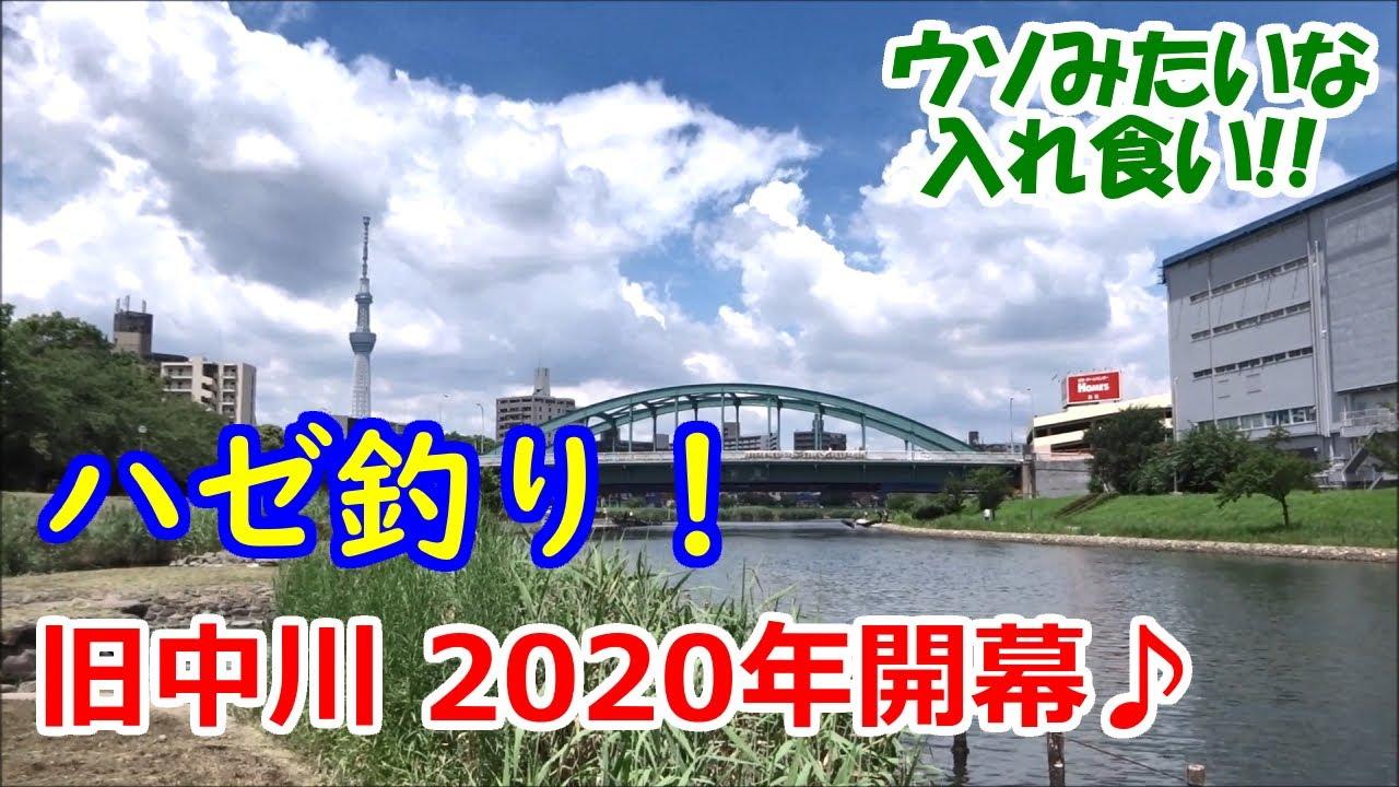 ハゼ釣り!★旧中川★2020 開幕【ウソみたいな入れ食い♪】