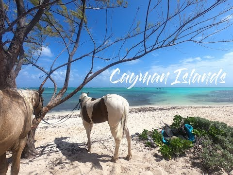 Cayman Island Travel Edit