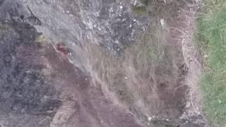 собака Петровские скалы Симферополь 04 02 17