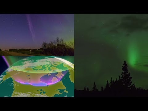 Meet 'Steve,' the rare celestial phenomenon lighting up the skies over Canada