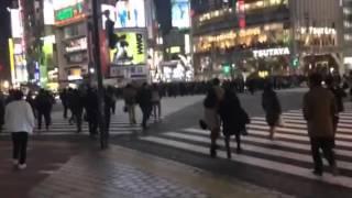 Tokyo Shibuya crosswalk