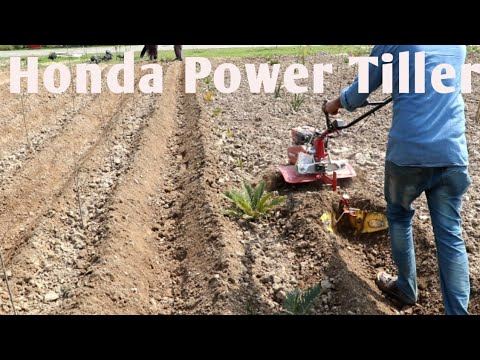Honda Power Tiller Review and Working in Pakistan || Modal FJ-500