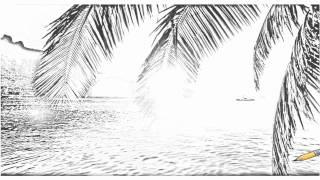 Auto Draw 2: Cooks Bay, Moorea Island, Polynesia