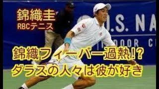 男子テニスの世界ランク27位・錦織圭(日清食品)が31日(日本時間1日)...