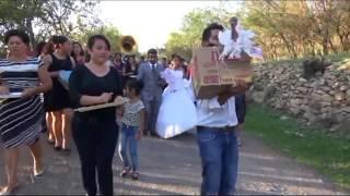 Baile de la flor, tradiciones de la Región Mixteca   Oaxaca (SAN JOSE CHEPETLAN)