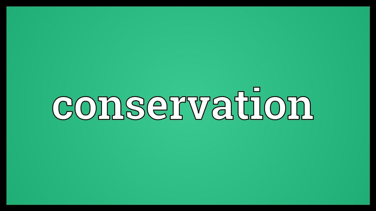 Conservation Meaning YouTube Maxresdefault Watch?vwRKWzaGWxY