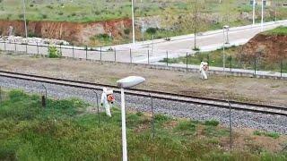 Las labores de desinfección en Mérida continúan en las vías del tren