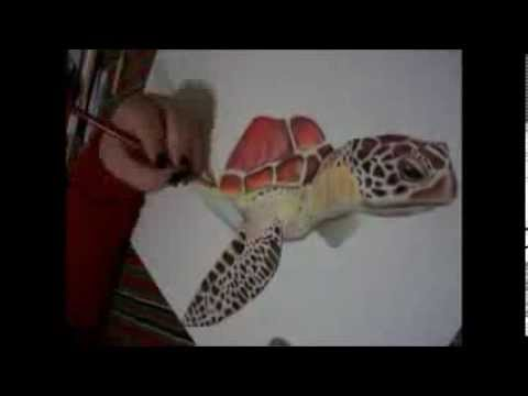Prismacolor Sea Turtle Drawing YouTube