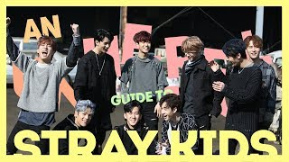 A Very (un)helpful Guide to Stray Kids