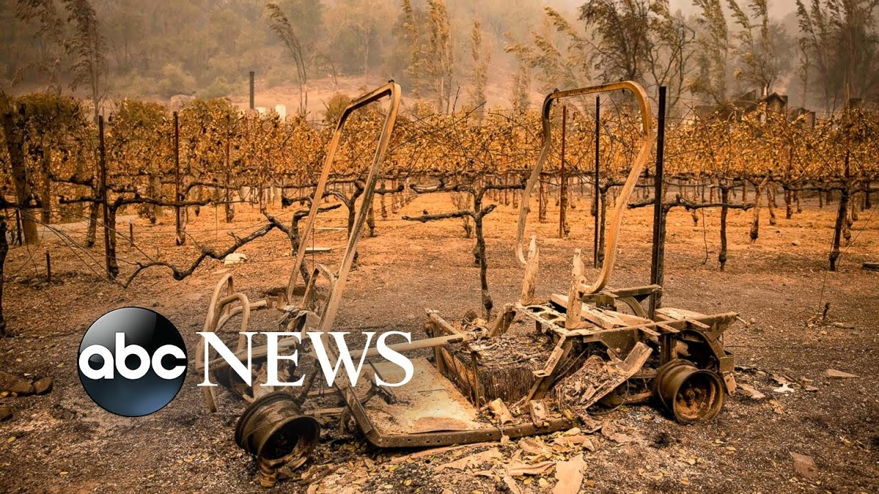 Napa Valley burns, Pope prays, the French Open continues: World in Photos, Oct. 1