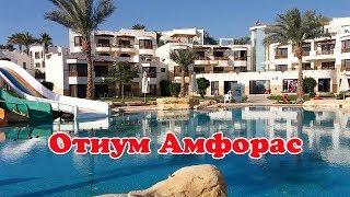 Otium Hotel Amphoras Sharm 5* Подробный обзор. Отдых в Шарм эль шейхе - Египет.