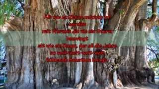 """Puhdys - """"Alt wie ein Baum"""