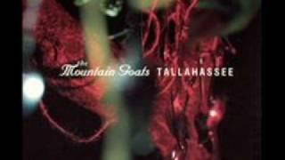 The Mountain Goats - No Children