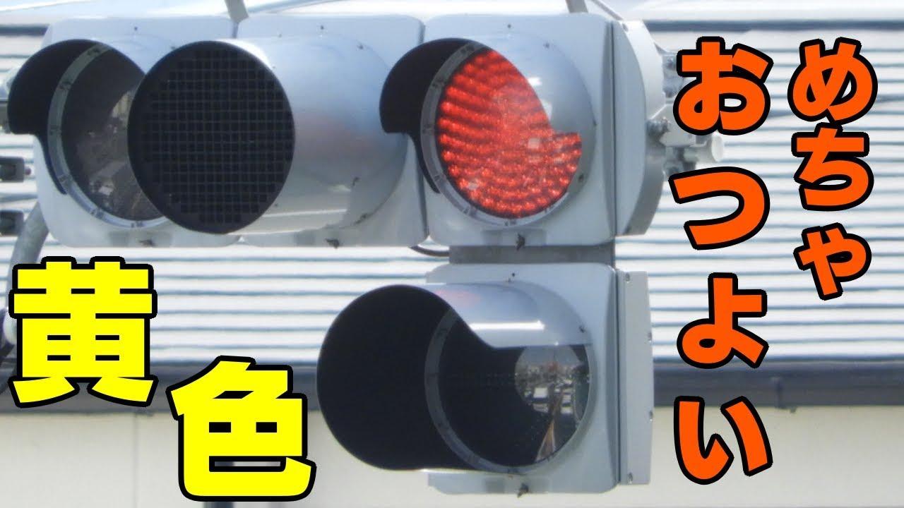 黄色信号。見えない。ぉっょぃ。【視覚制限フードの信号機】
