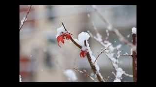 DADA(池田聡&黒田アーサー)の名曲 『冬物語』を歌いました。 スマー...