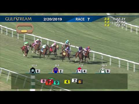 Gulfstream Park February 20, 2019 Race 7