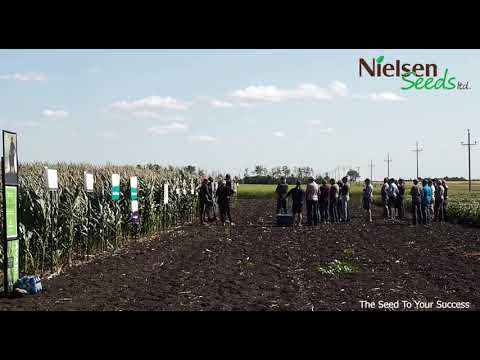 Nielsen Seed Plot Tour Aug 7. 2019
