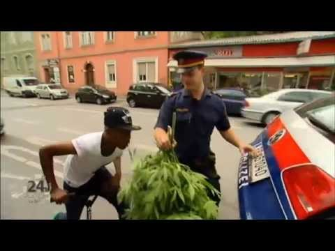 German cop handles marijuana plants