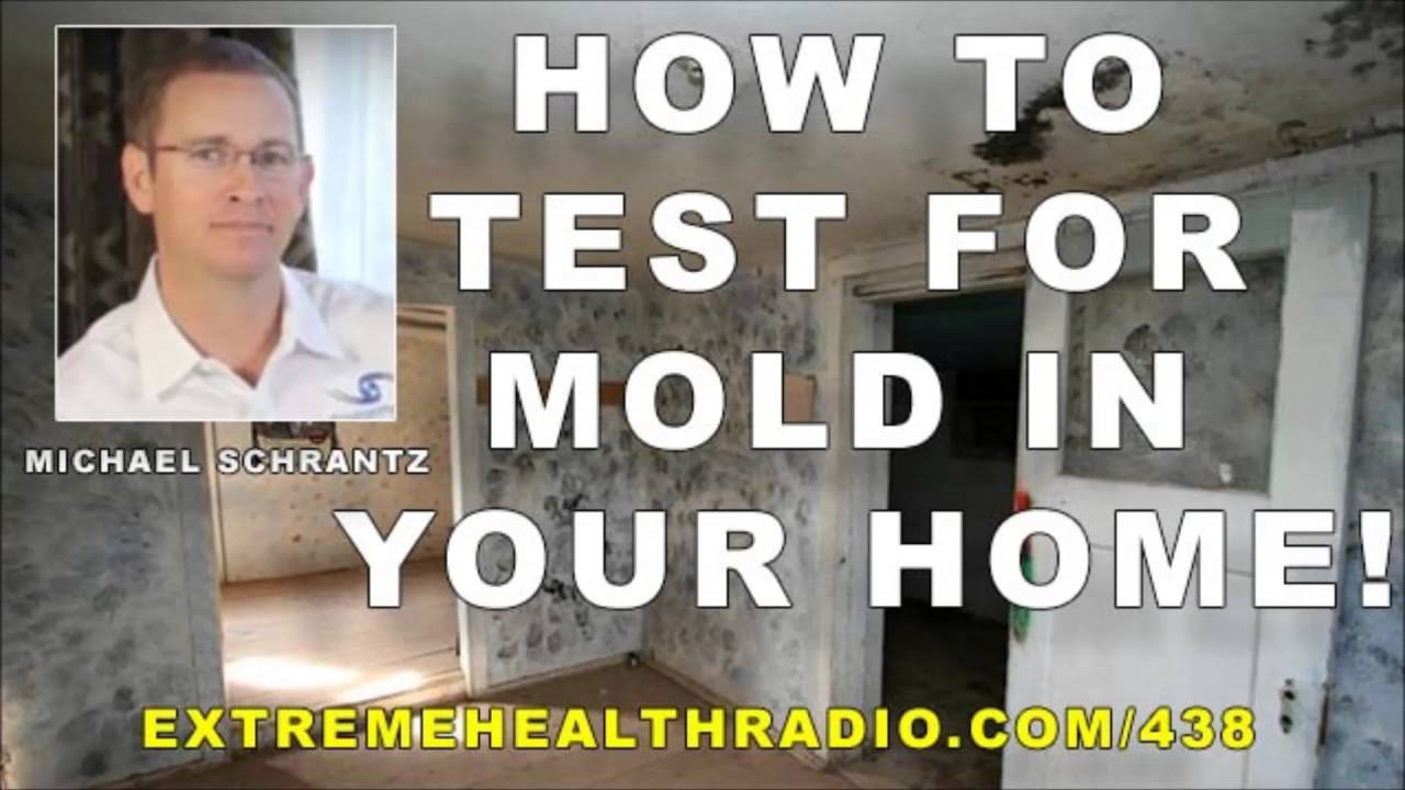 michael schrantz how to test for mold in your home properly youtube. Black Bedroom Furniture Sets. Home Design Ideas