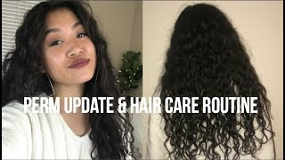 Perm Update and Hair Care Routine