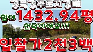 [부동산추천] 경주 1432.94평 임야 경매/ 신건 …