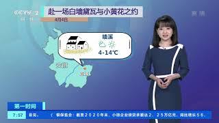 [第一时间]清明假期 观赏油菜花正当时| CCTV财经 - YouTube