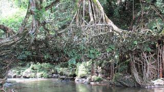 Barapani Cherrapunjee Sohra Mawlynnong Shillong Meghalaya - Halfway to Heaven - Incredible India