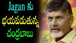 ChandraBabu Got Fear With Ys Jagan | Latest Political News Today News Updates | Political Punch