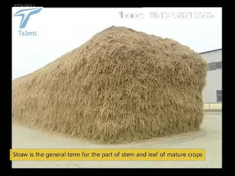 Biodegradable  Plates And Glasses Making From Rice Grass Wheat Grass  - Wheat Straw