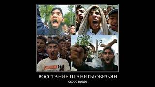 КРИЗИС В РОССИИ - 7, смешные приколы, юмор, демотиваторы, crisis in Russia 7, Подборка 7 \ ТОР 1