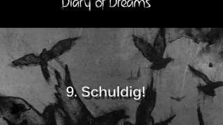 Diary of Dreams - Grau im Licht - Preview 9: Schuldig!