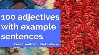 100 Adjectives Every Vietnamese Beginner Must-Know - Learn