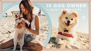 10 Dog Owner MUST HAVES + Tips