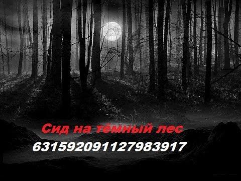 смешанный, широколиственный лес фото, видео, картинки
