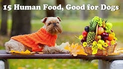 15 human foods good for Dogs