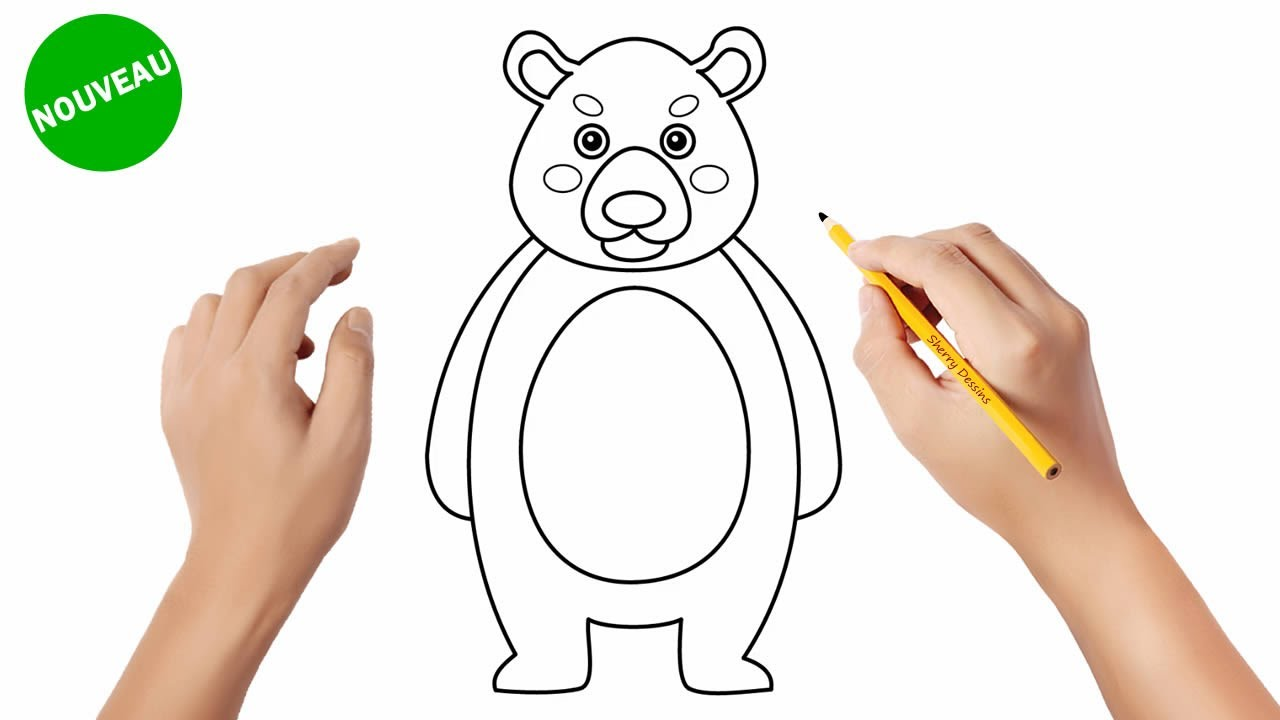 Comment dessiner un ours | How to draw a bear