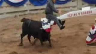 Jackass - Bull versus 4-man seesaw