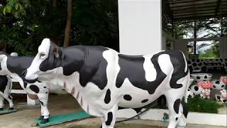 Cow's Coffee - Cow Sit down to play - Moo Moo