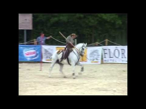 2009 European Championship Working Equitation - Pedro Neves - Speed