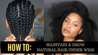 HOW TO: MAINTAIN + GROW LONG + HEALTHY HAIR UNDER WIGS!