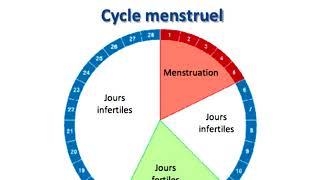 Quels sont les jours fertiles pour tomber enceinte ?.
