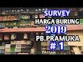 Survey harga burung 2019..pasar burung pramuka, episode1 android