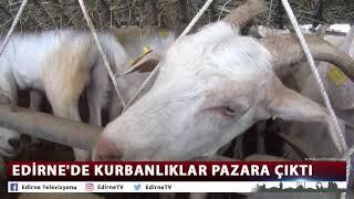EDİRNE'DE KURBANLIKLAR PAZARA ÇIKTI