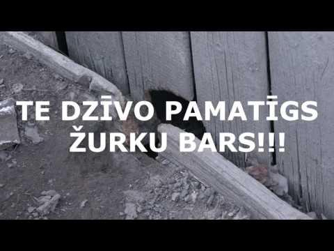 ušakova -- amerika promenāde Rīgas centrā