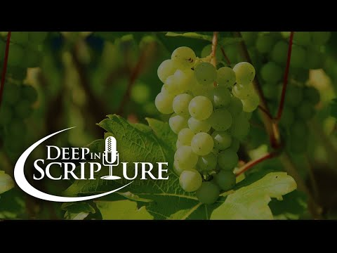 Deep in Scripture: Proverbs 3:5-6 and Galatians 5:22-23 - Marcus Grodi and Matt Swaim