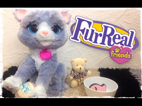 Hasbro furreal friends mon chat bootsie doovi - Moustache mon chat hasbro ...