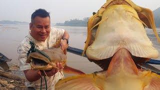 ปลาแค้ยักษ์ แม่น้ำโขง จับได้ 29 มานาคม 2561