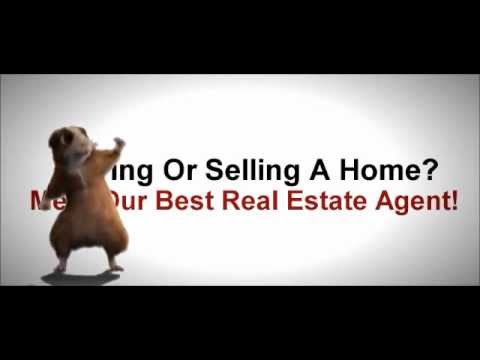 BEST Melbourne Luxury Real Estate Listing Agents Realtors Brokers Waterfront Realty Specialists